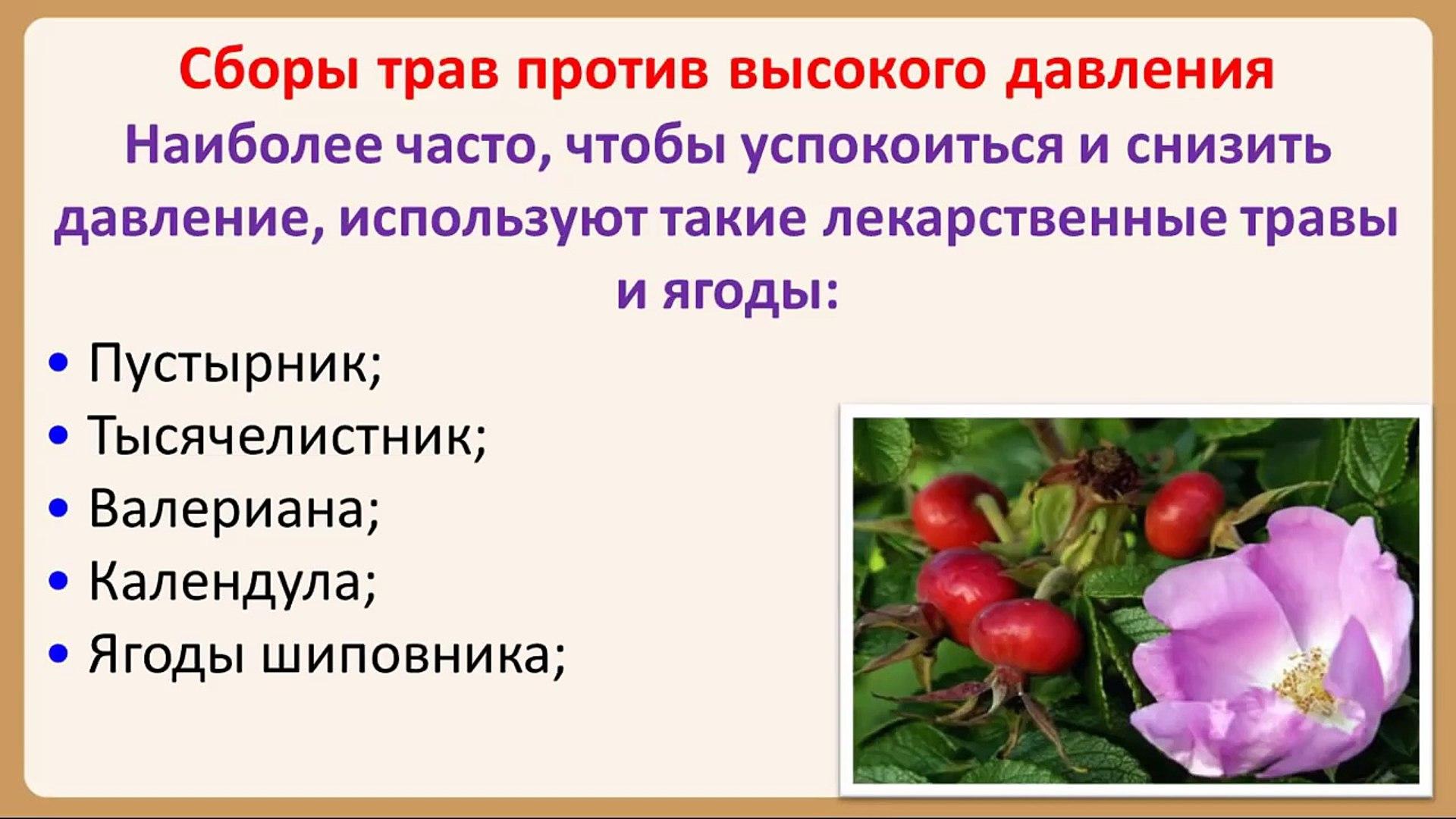 травы против гипертонии