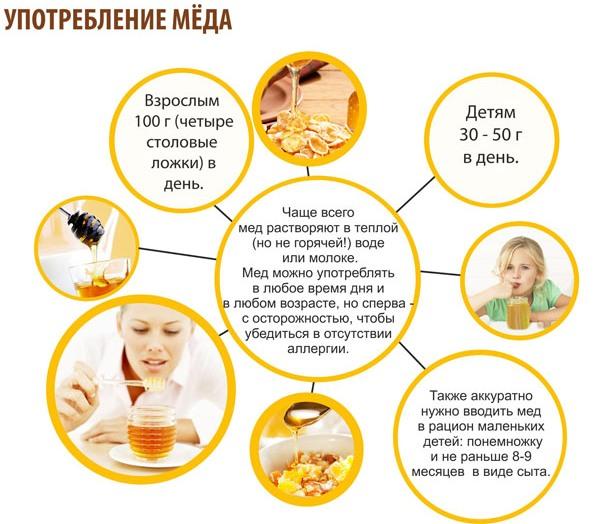 правильное употребление меда