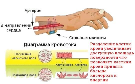 действие магнитного браслета