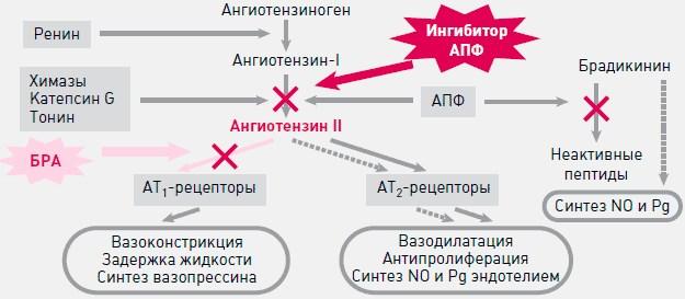 действие сартанов