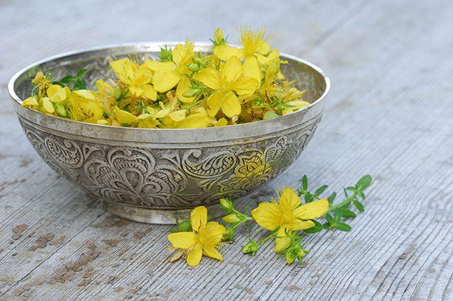 цветки зверобоя в чашке