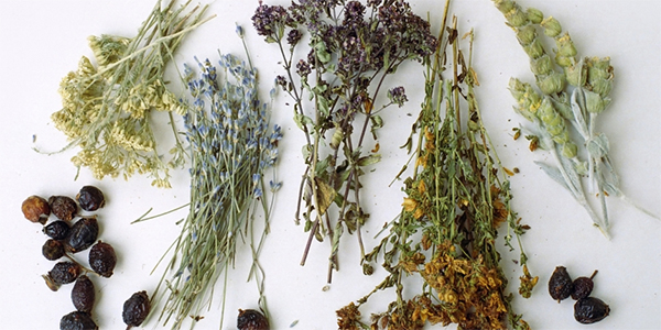 травы
