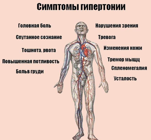 некоторые симптомы гипертонии