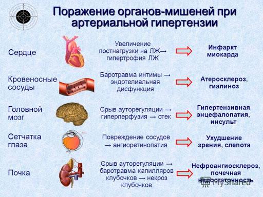 поражение органов мишеней при гипертонии